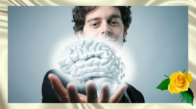 12 советов по повышению работоспособности мозга