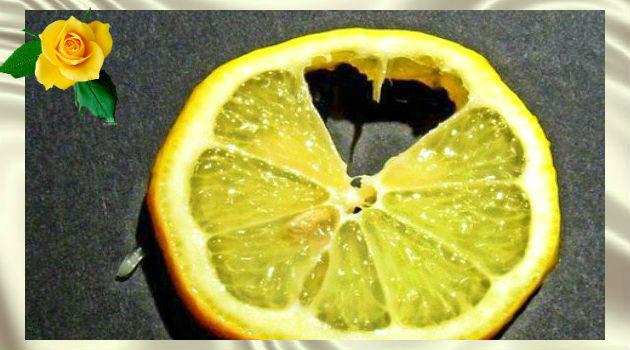 Лечим сердце лимонами