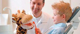 врач для зубов