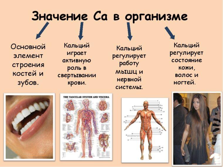 Пополняем недостаток кальция в организме! Великолепное средство - КАЛЬМАГ!!!
