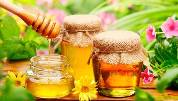 Мёд и его уникальные свойства для оздоровления организма