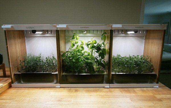 Гроубокс – новинка в современном растениеводстве. Как сделать своими руками?